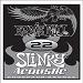 Ernie Ball Guitar Strings: .022 Slinky Acoustic Phosphor Bronze Six-Pack -1822